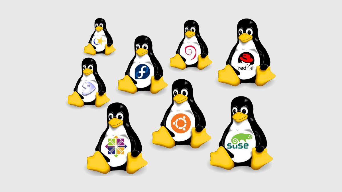 7 Best Desktop Linux Distros